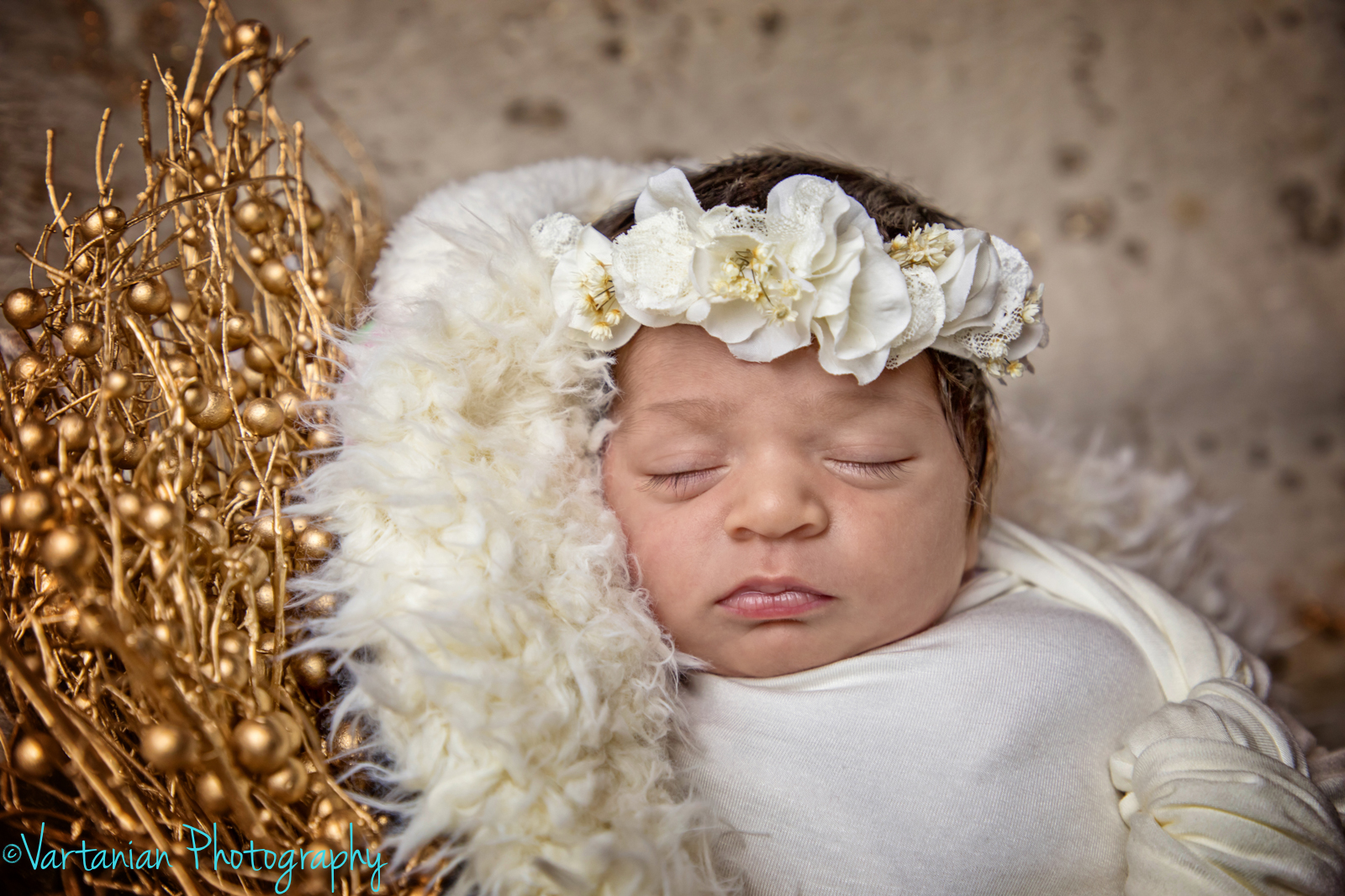 Newborn-photography-Vartanian-Photography-Plymouth-michigan-5.jpg