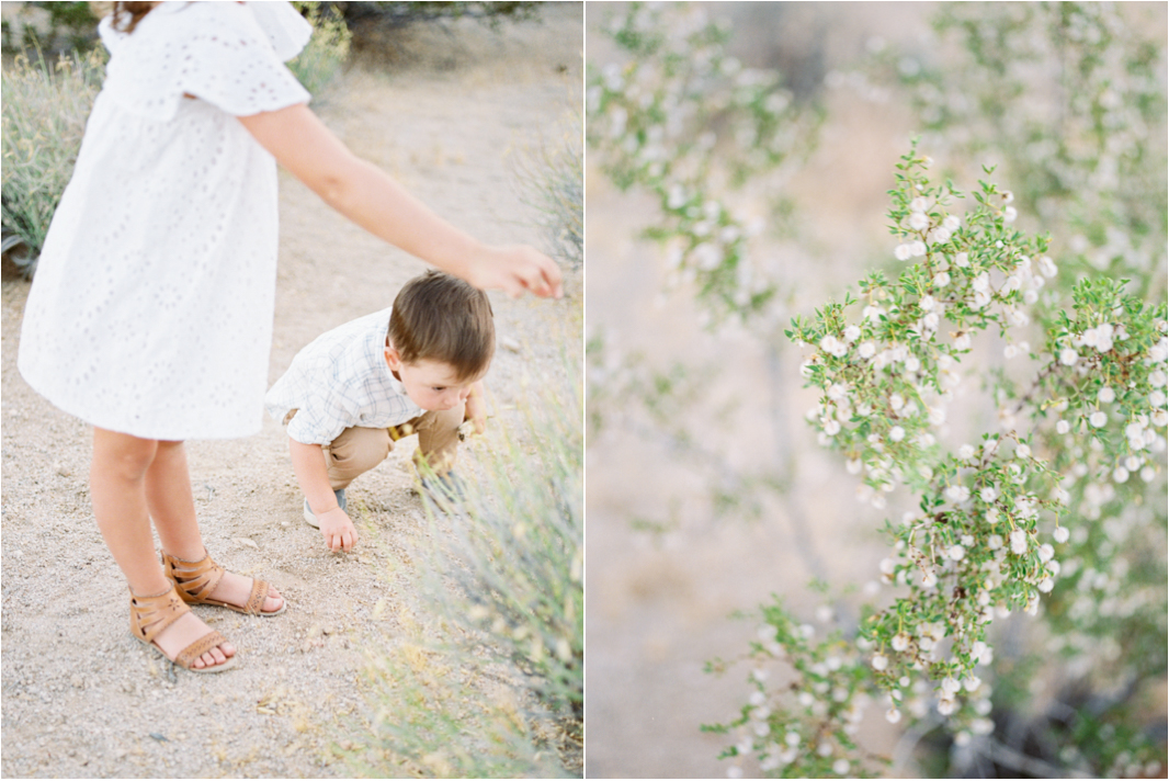 Alexis Ralston Photography | Joshua Tree Family Photographer | Mommy and Me | Joshua Tree | Zara Outfits | Family Session Inspiration | What to Wear to your Family Session | Fuji 400h | Pentax 645Nii.jpg