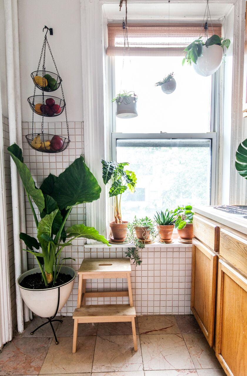 Leaf+June_Kitchen3.jpg