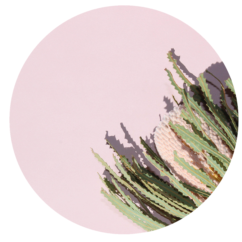 BILBERRY BLUSH -