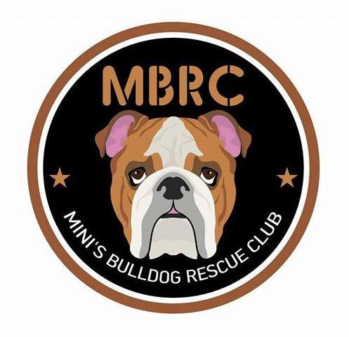 Mini's Bulldog Rescue Club -