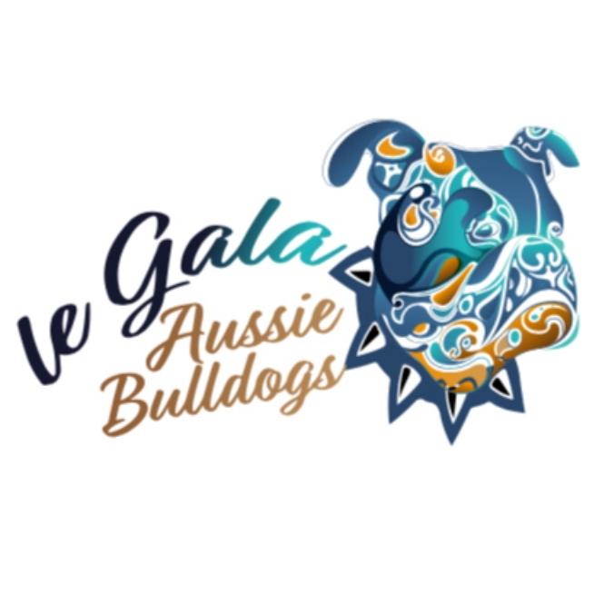 le Gala Aussie Bulldogs - Located: HobartPlease contact: AimeePhone: 0428 906 969eMail: aimeegaggi@gmail.com
