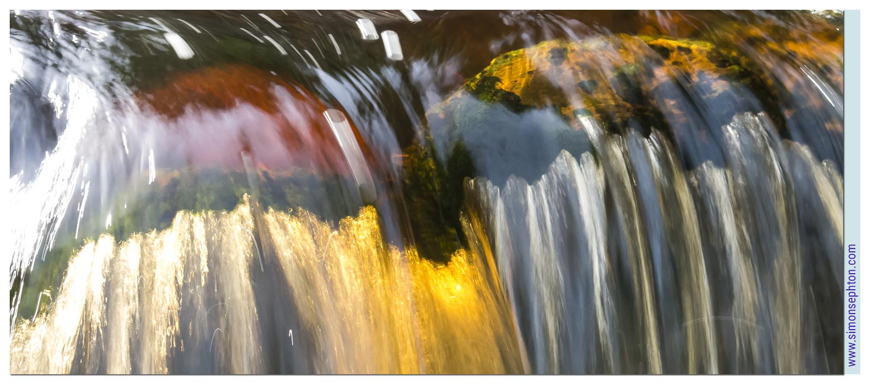 """""""Otter gold"""" by Simon Sephton."""