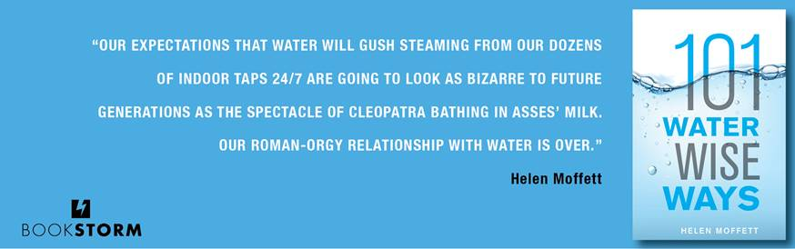 Water book banner.jpg