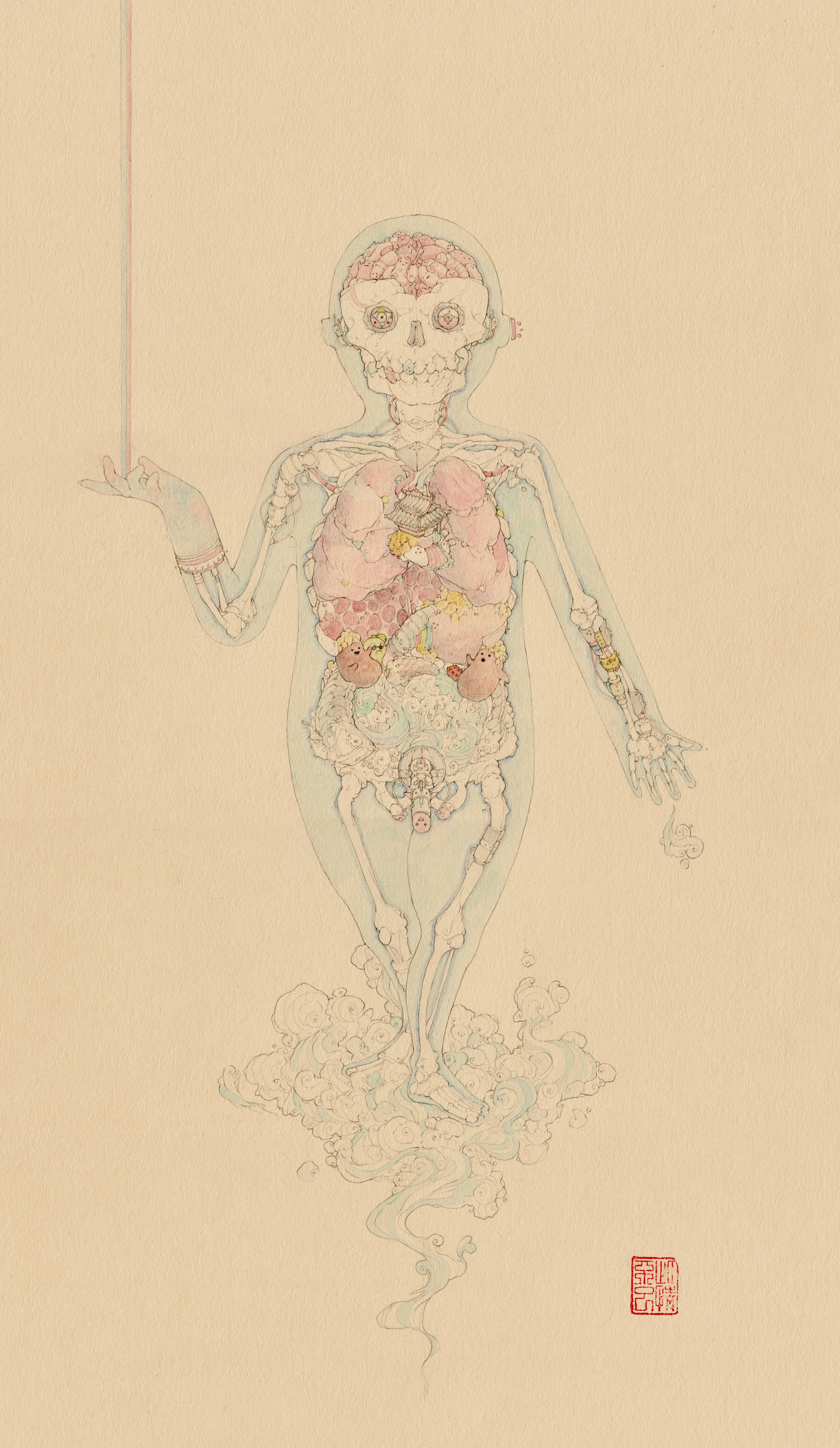 Anatomy Export01.jpg