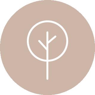 Baum_Rund_Cappuccino.png