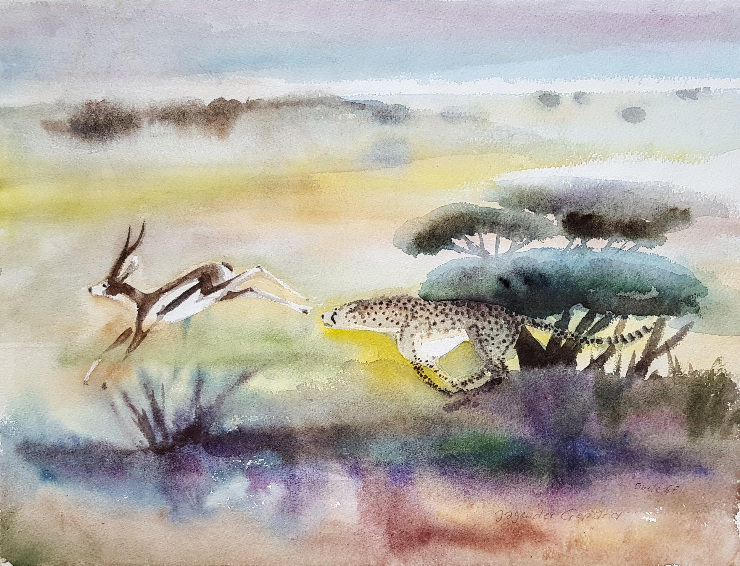 Jagender Gepard / Hunting Cheetah
