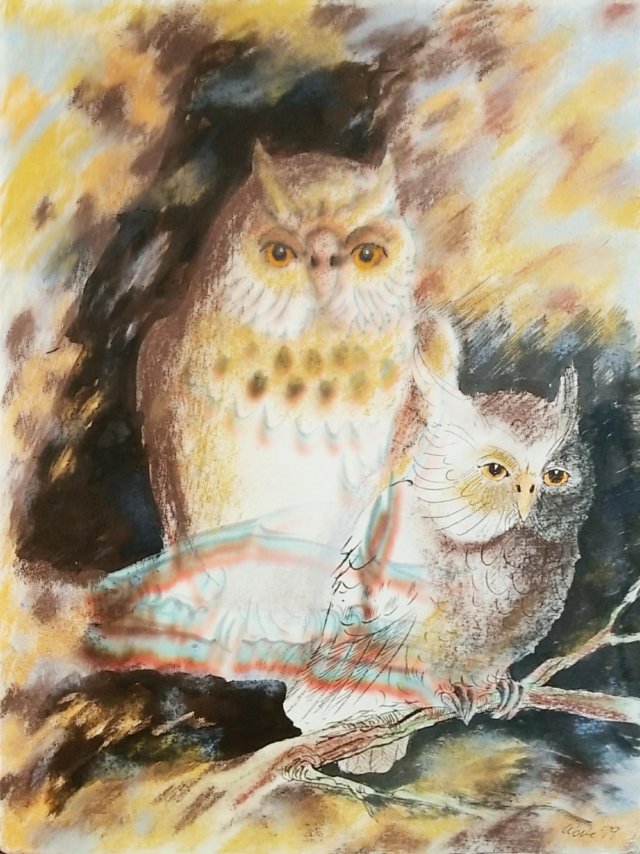 Uhus aus dem Siebengebirge / Eurasian Eagle Owls at the Seven Mountains