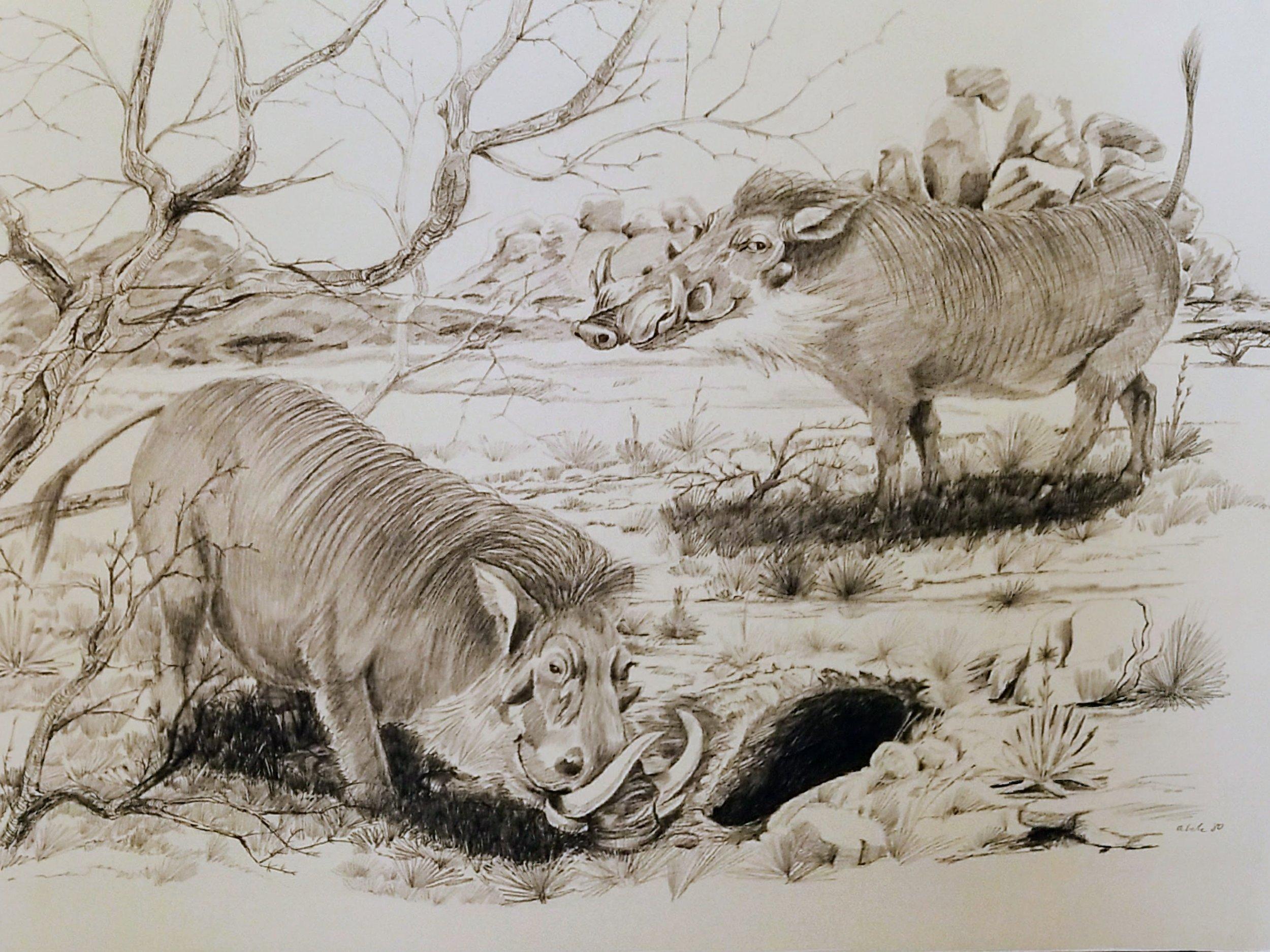 Warthogs Digging a Den