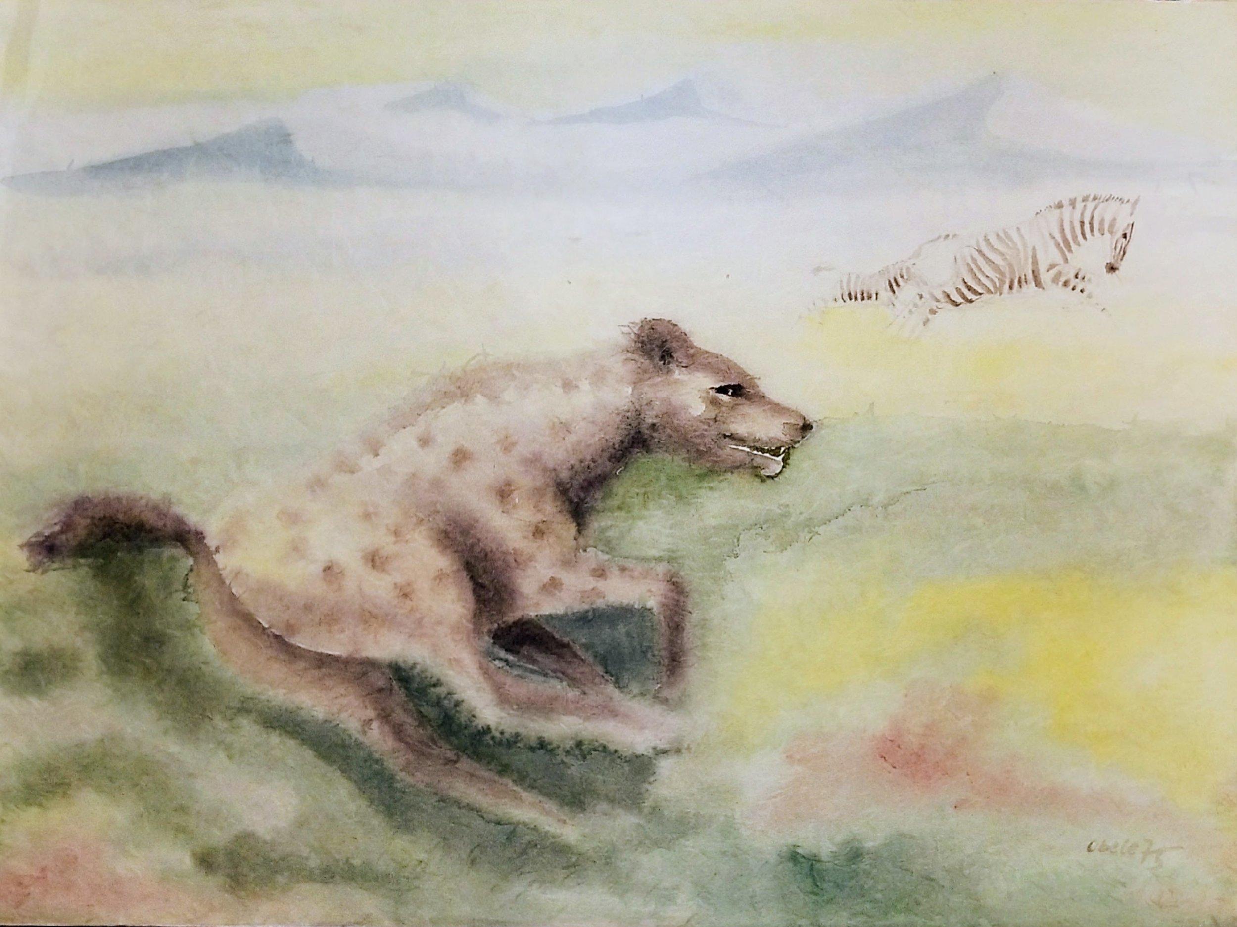 Jagende Tüpfelhyäne / Hunting Spotted Hyena