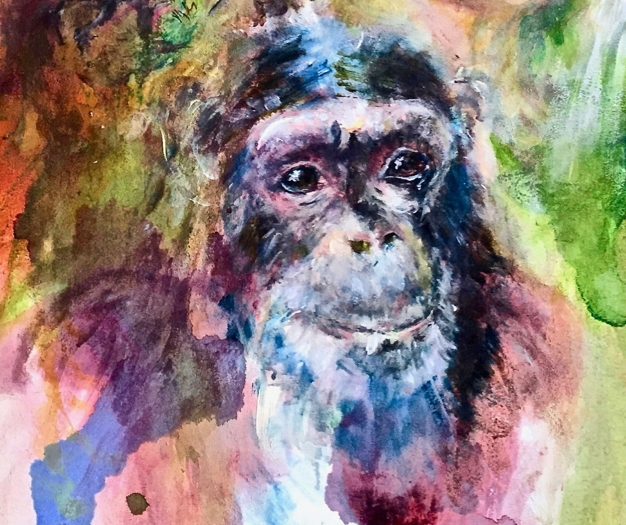 A Dear Old Friend - In her recent exhibition ALL COLOURS, Daniela partnered with the Jane Goodall Institute, Deutschland. donating 20% of sales to the JGI's Roots & Shoots youth program to empower children to make a positive impact on the environment.Left: An Old Friend, watercolor on canvas, 2018. The painting features David Greybeard, the first chimpanzee to approach Jane Goodall in Gombe, Tanzania.See more about the exhibition here.