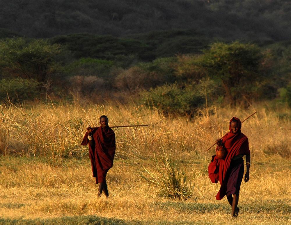 Maasai_field.jpg