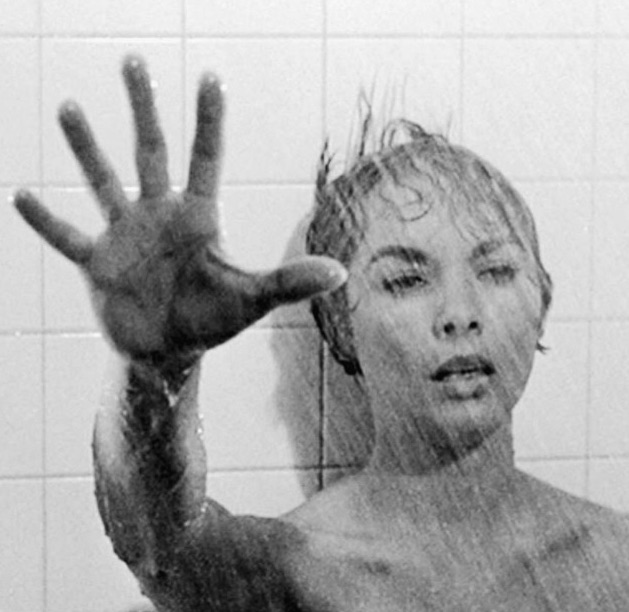 Janet Leigh - The night she stayed in the Bates Motel...