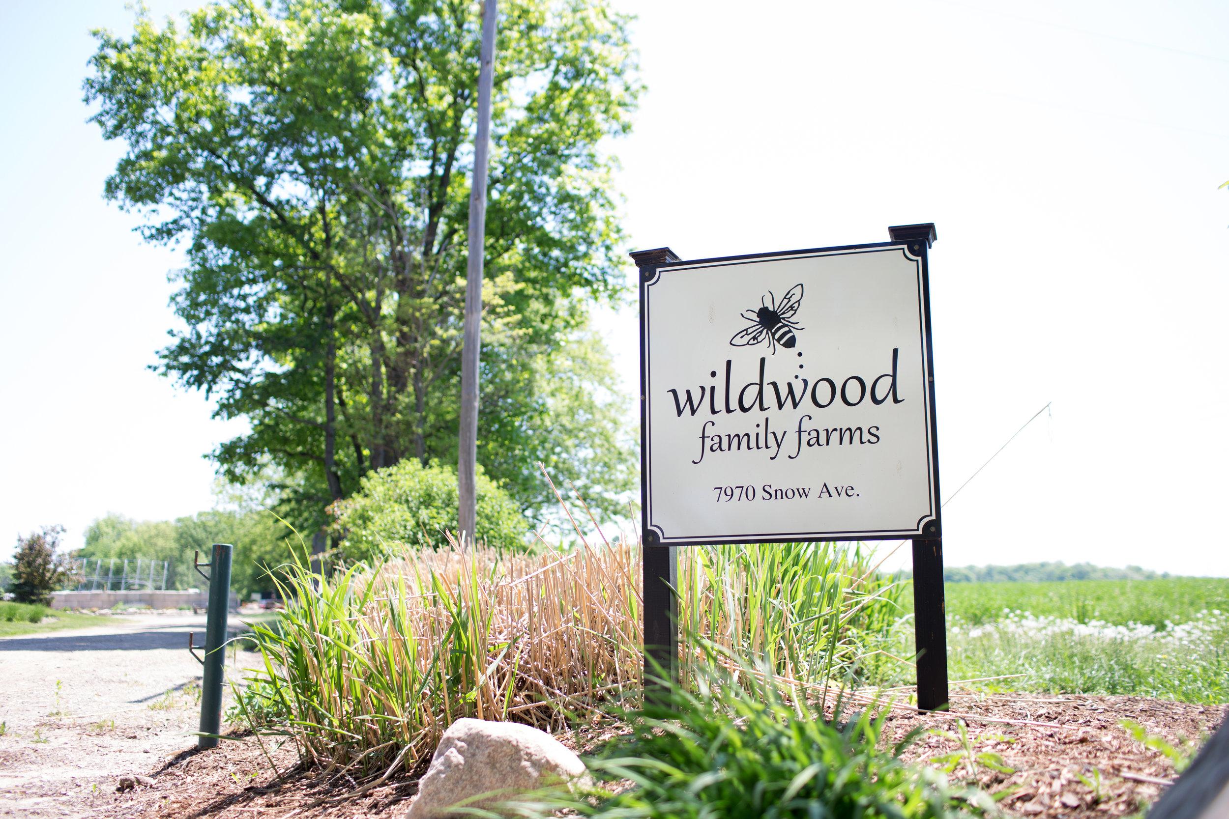 WildwoodFF.jpg