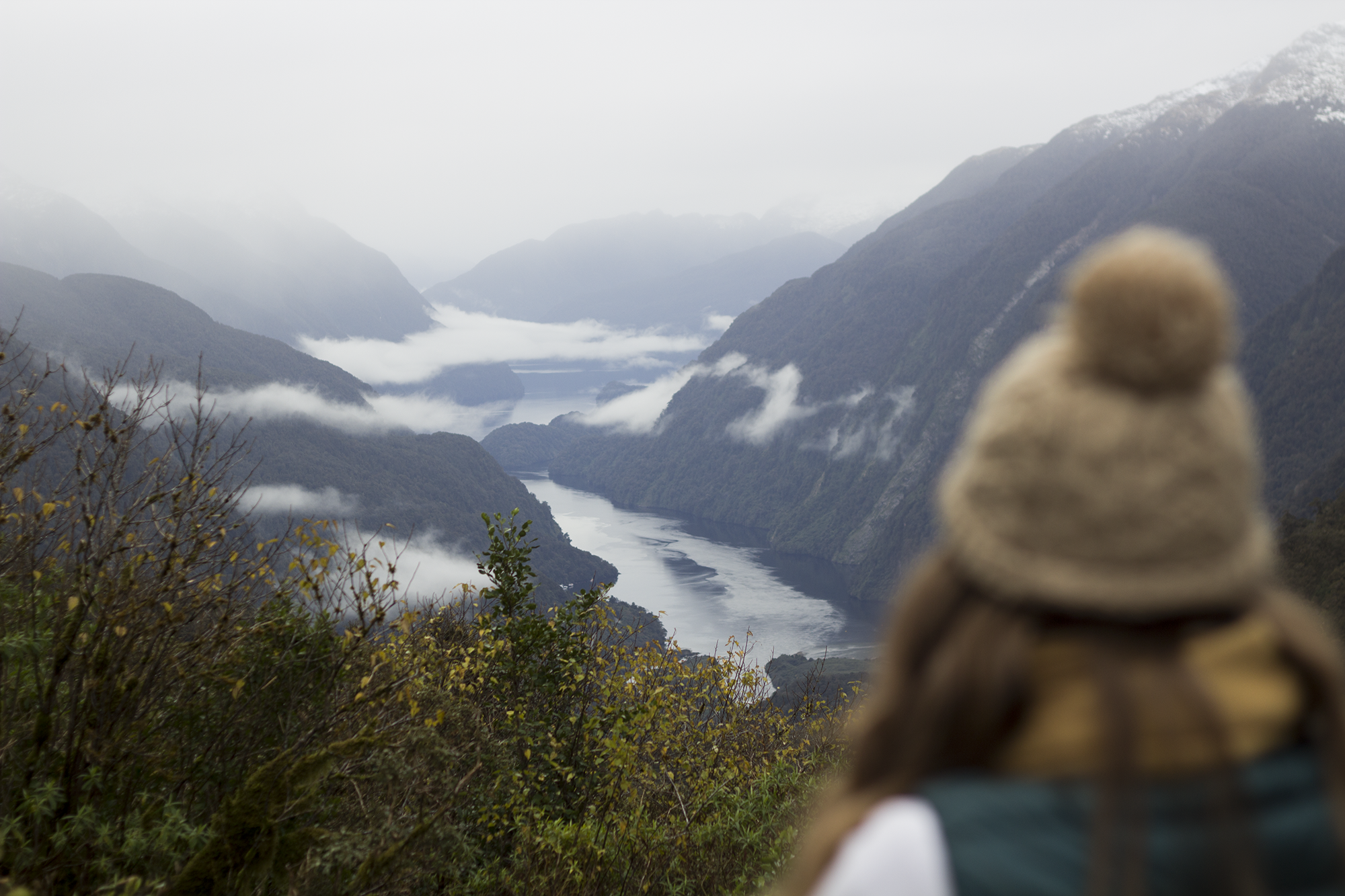 Doubtful Sound3.png