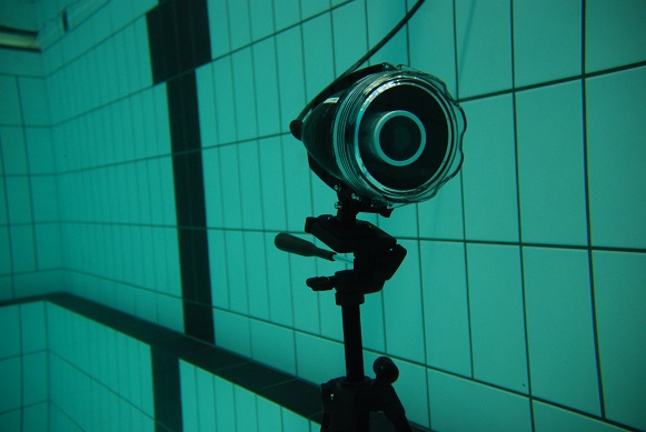 Spot X Squid Underwater Hockey Close-up