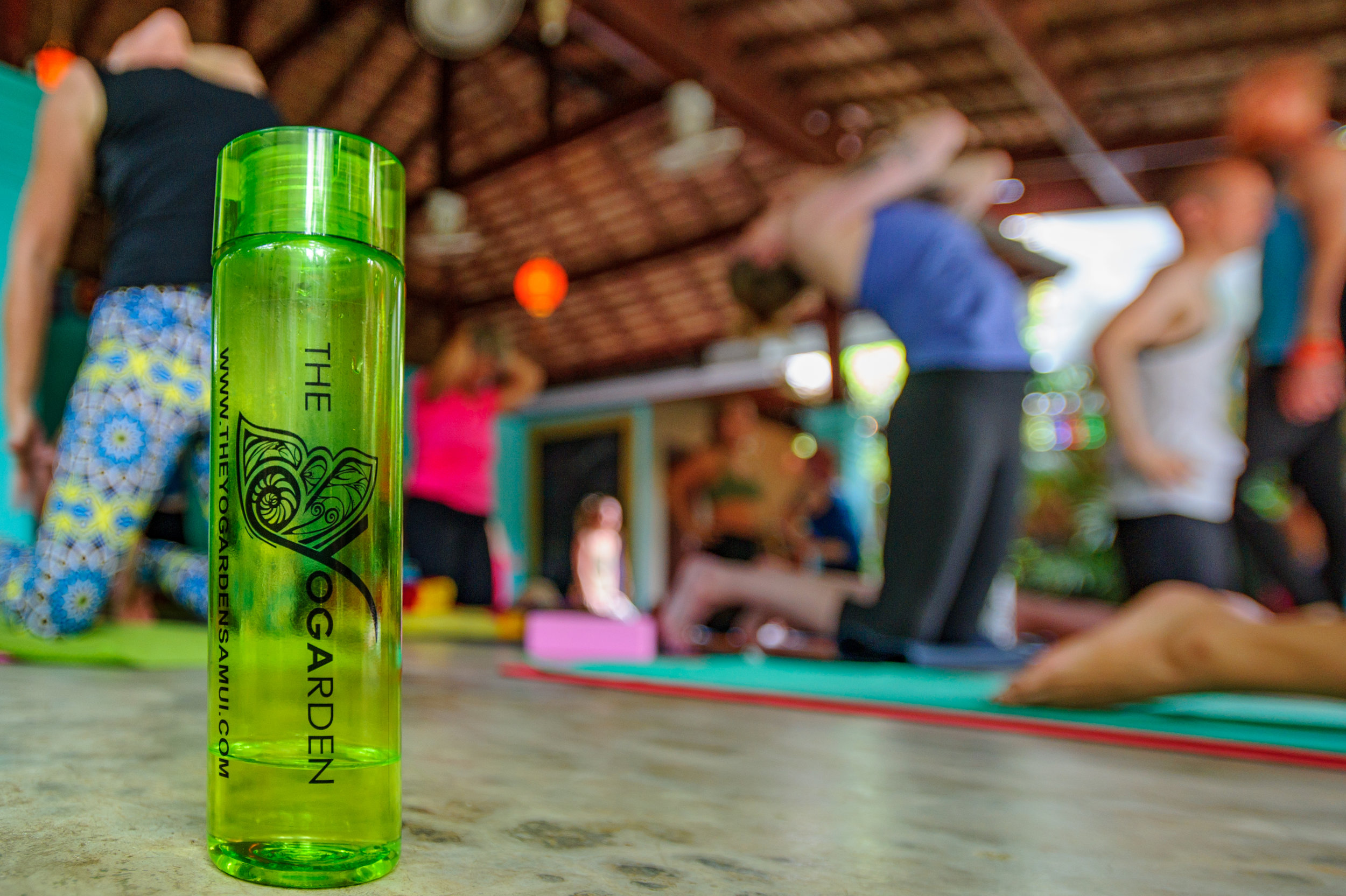 yin yoga 1(100hrs) - KOH SAMUI, THAILAND