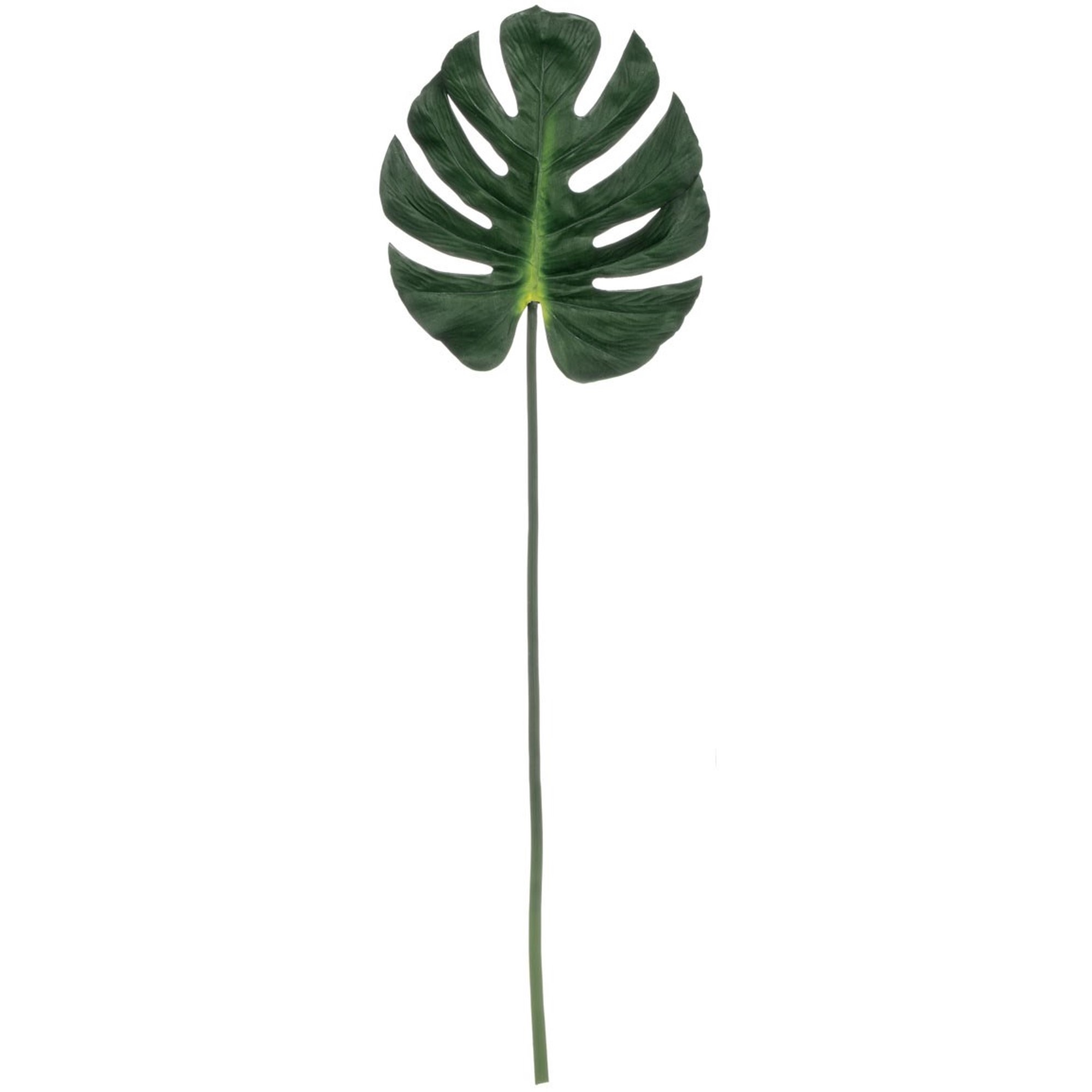 Split Leaf Philodendron Stem, Amanda's House Of Elegance  ($8.95)
