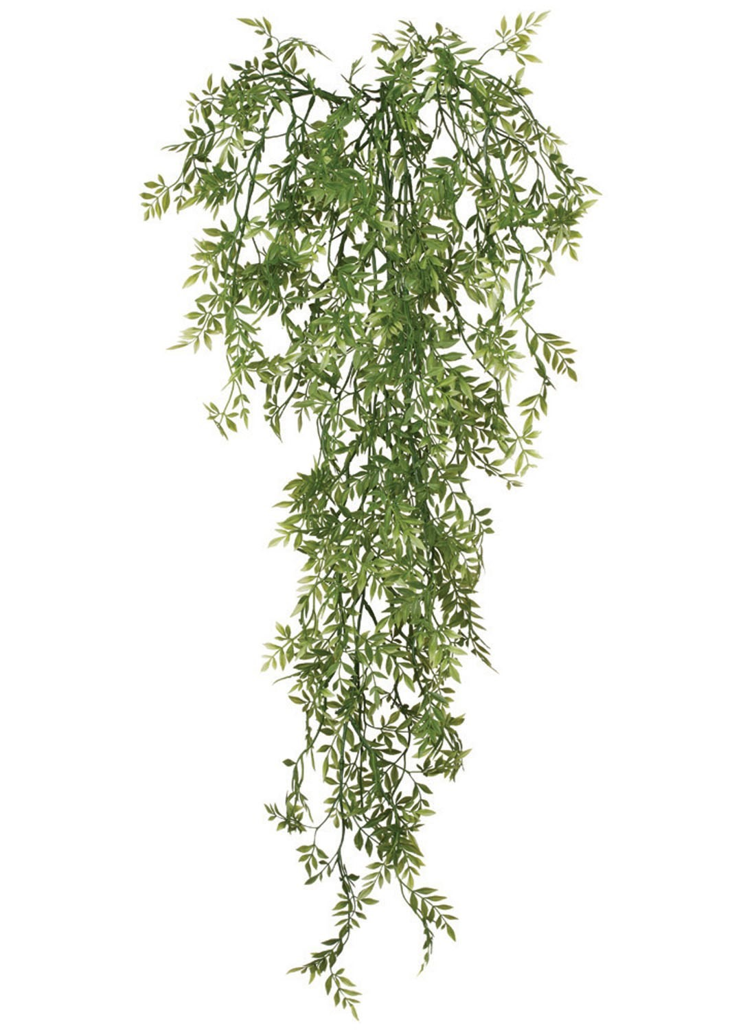 Wisteria Mini Vine, Amand's House Of Elegance  ($20.95)