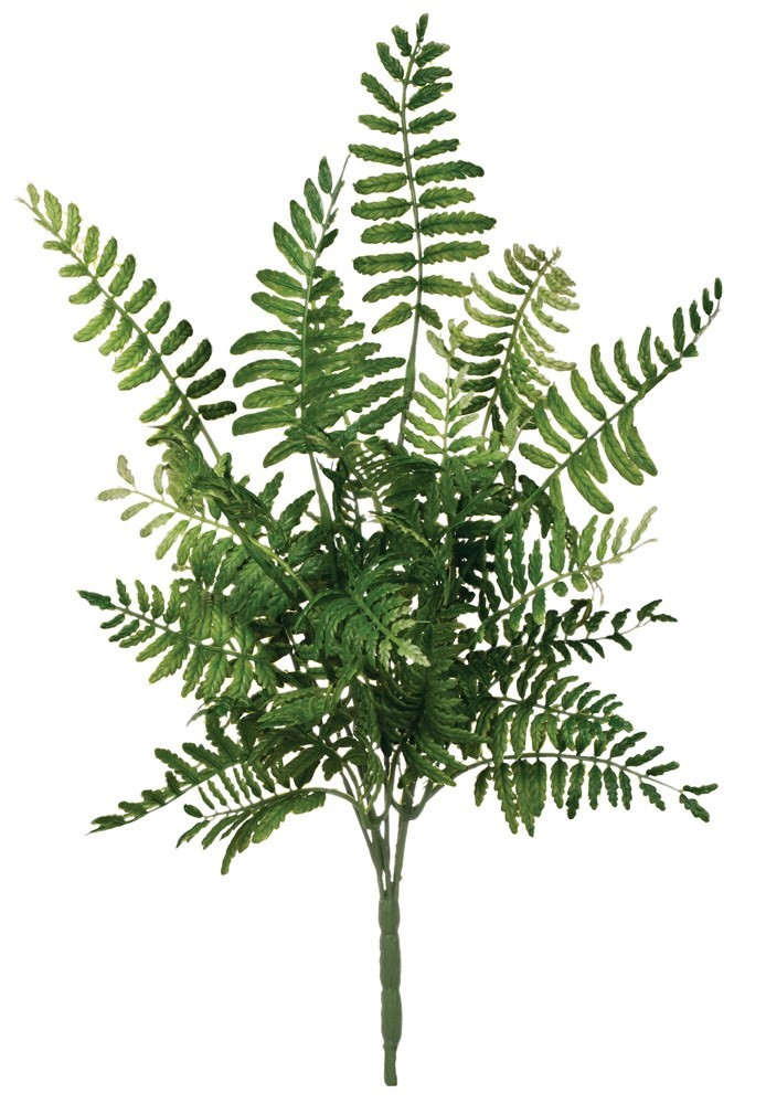 Fern Pick, Amanda's House Of Elegance  ($9.95)