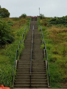 Libby Hill Stairs in Richmond VA