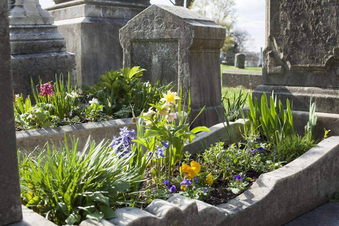 Grave Gardeners-0454.jpg
