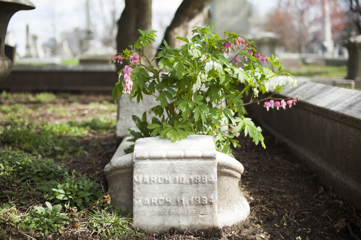 Grave Gardeners-0479.jpg