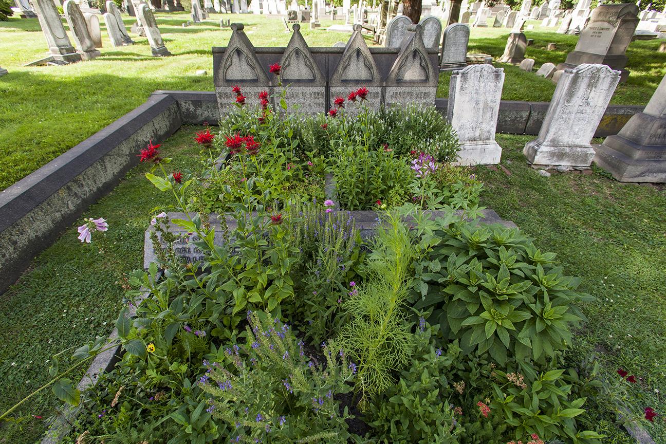 grave gardens-0685.jpg