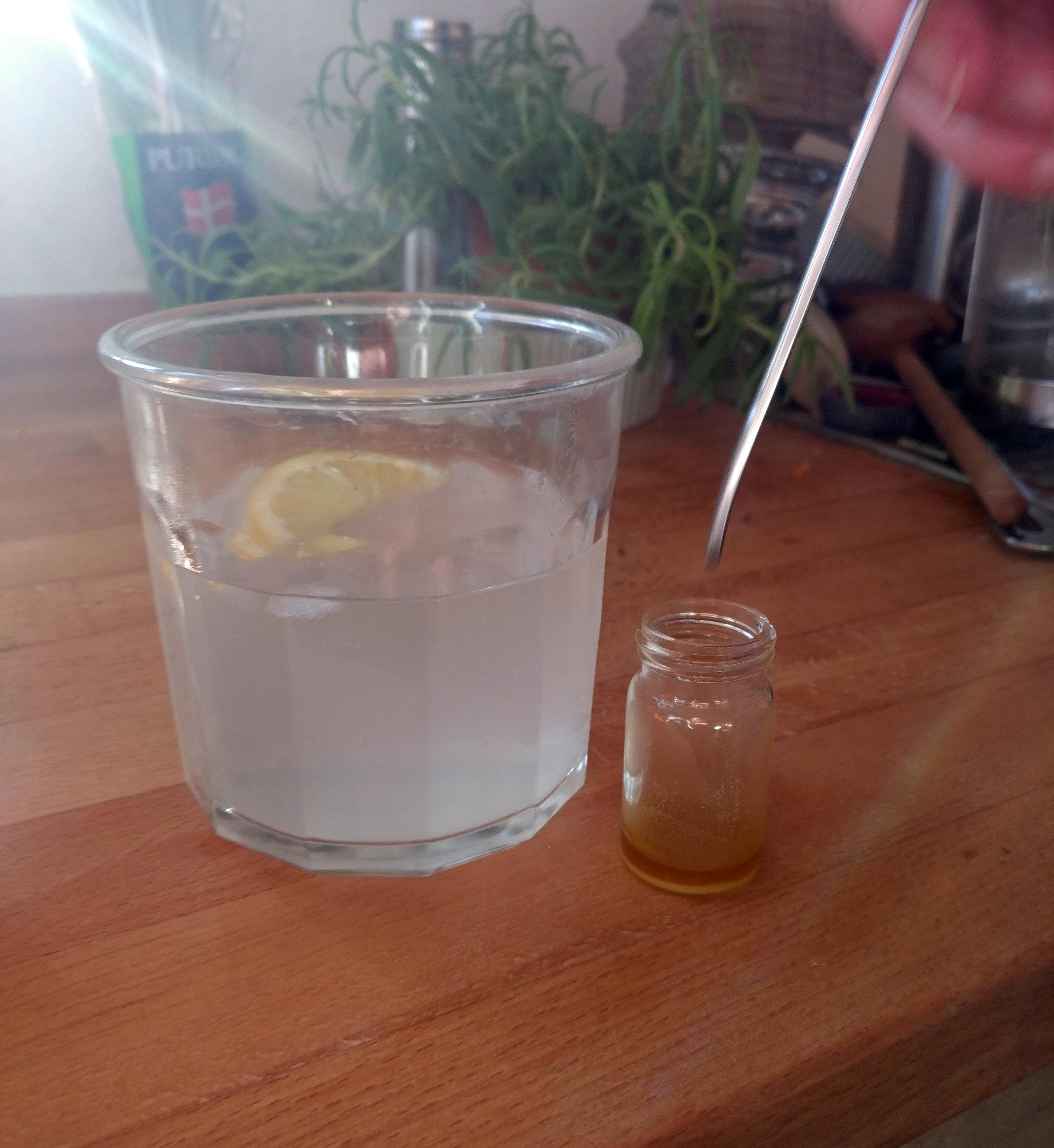 lemon peel G&T 3.jpg