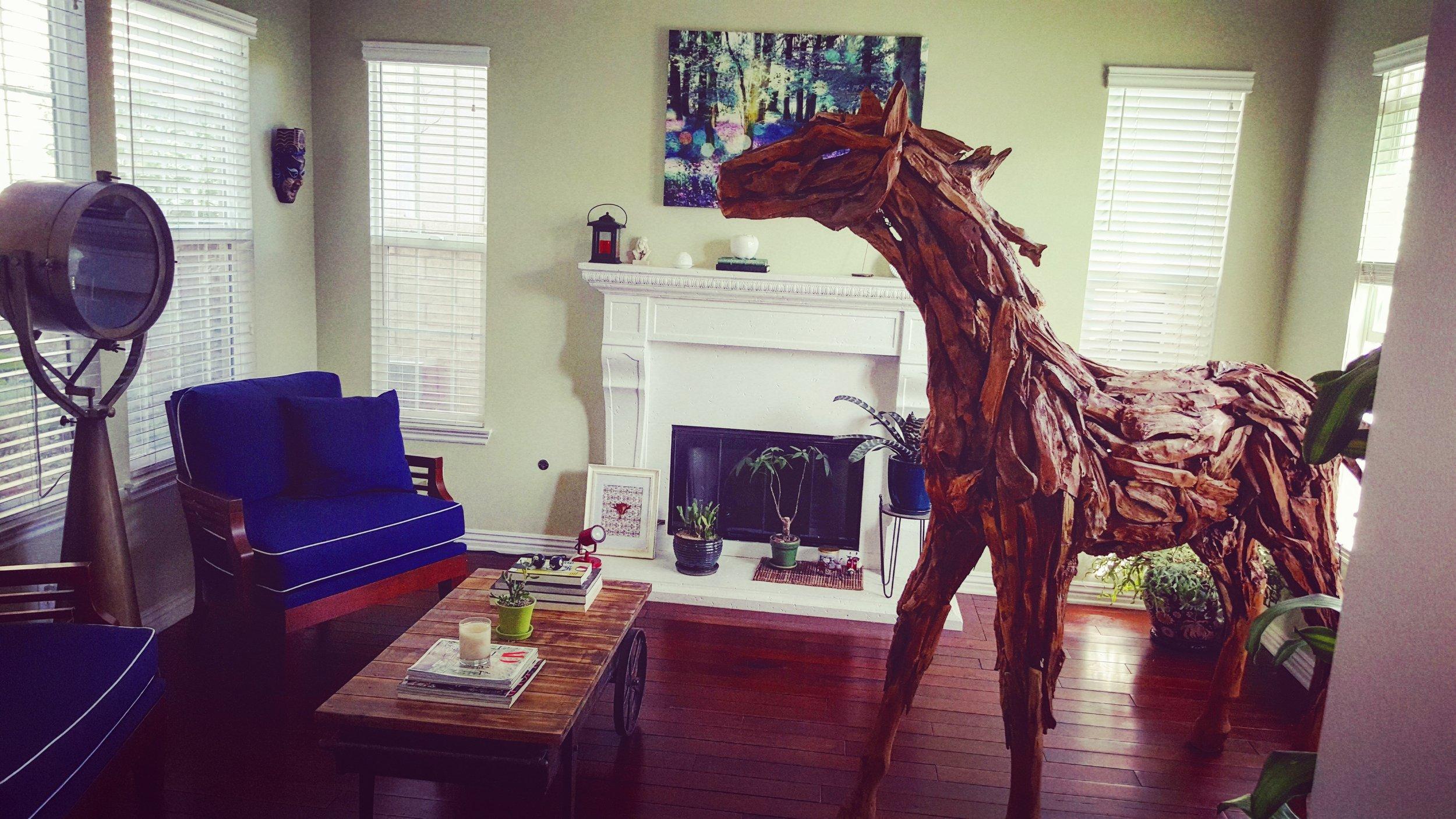 Pet, Bruce the horse.jpg