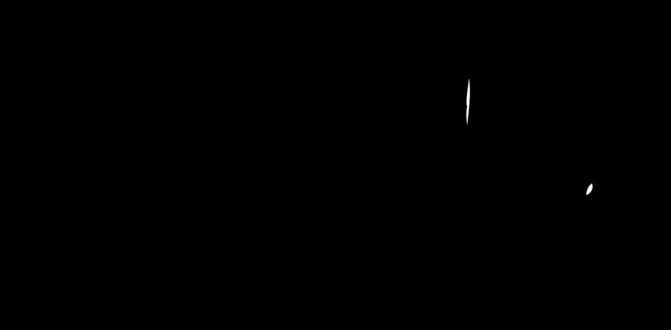 Salvatores logo vector.png