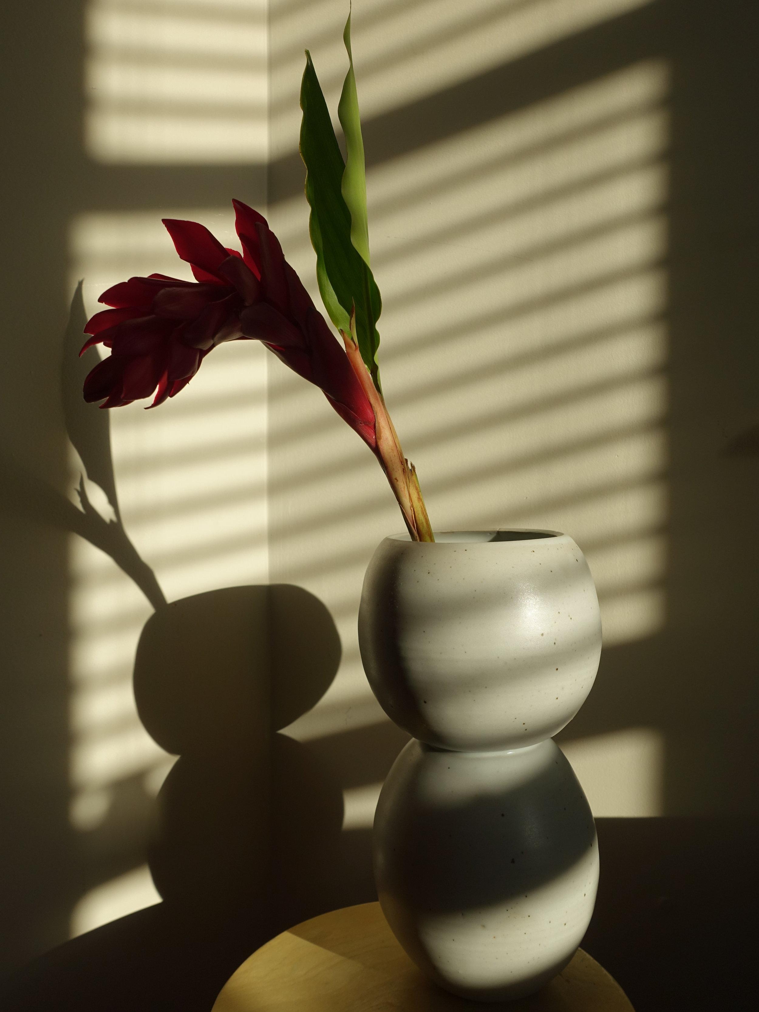snowman flower shadow (1).JPG