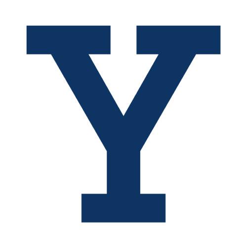 Yale Bulldogs Logo Iron-on Transfers (Heat Transfers) N7093.jpg