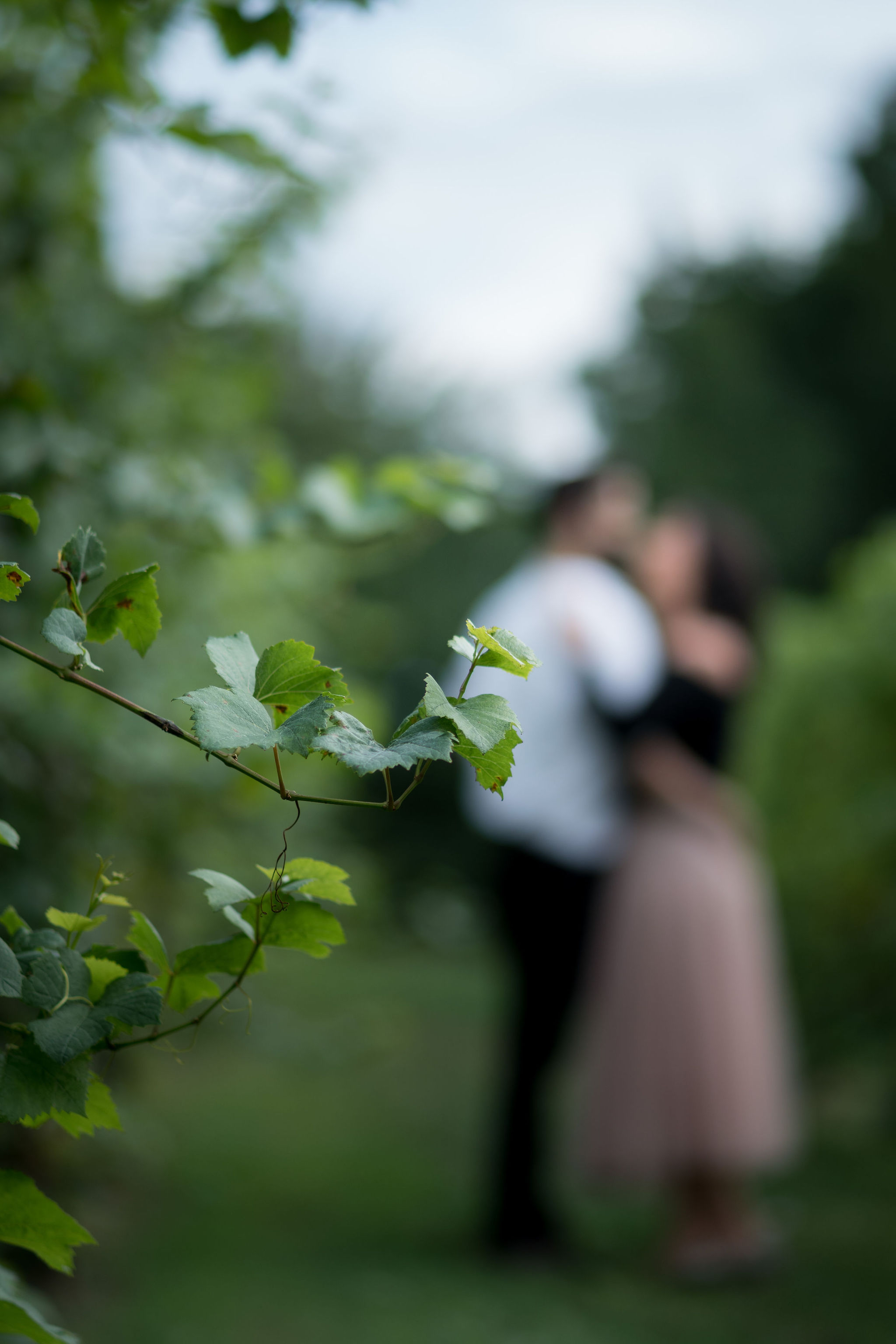 Tyler + Chael's Tabor Hill Winery Engagement Session_9.jpg