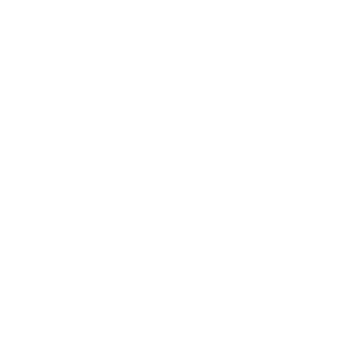 seniorcollective.png