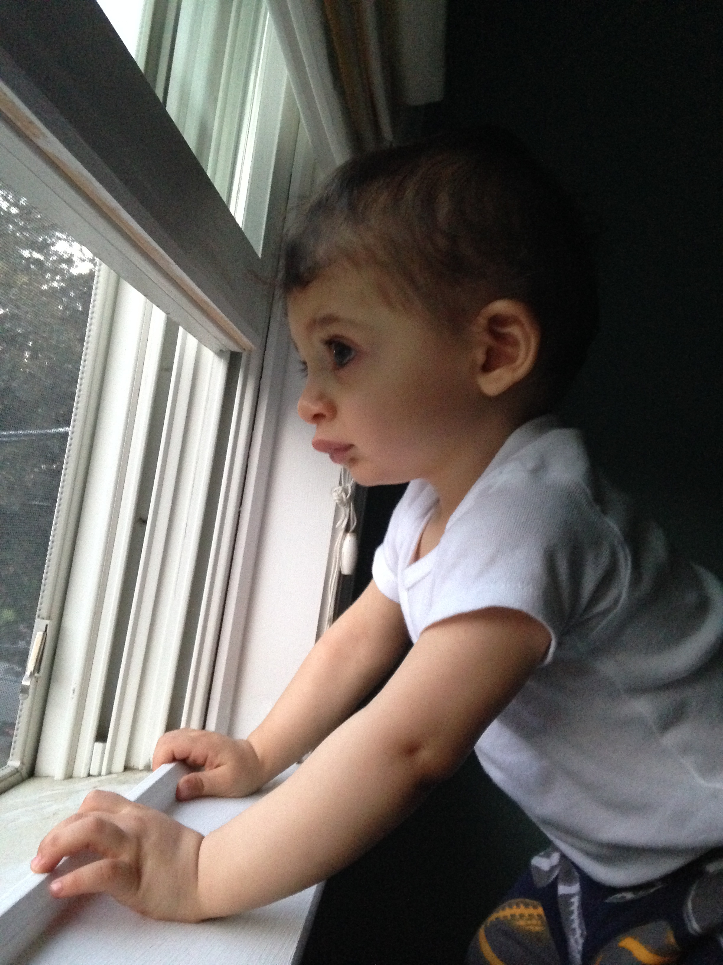 Young male child gazes out a window.
