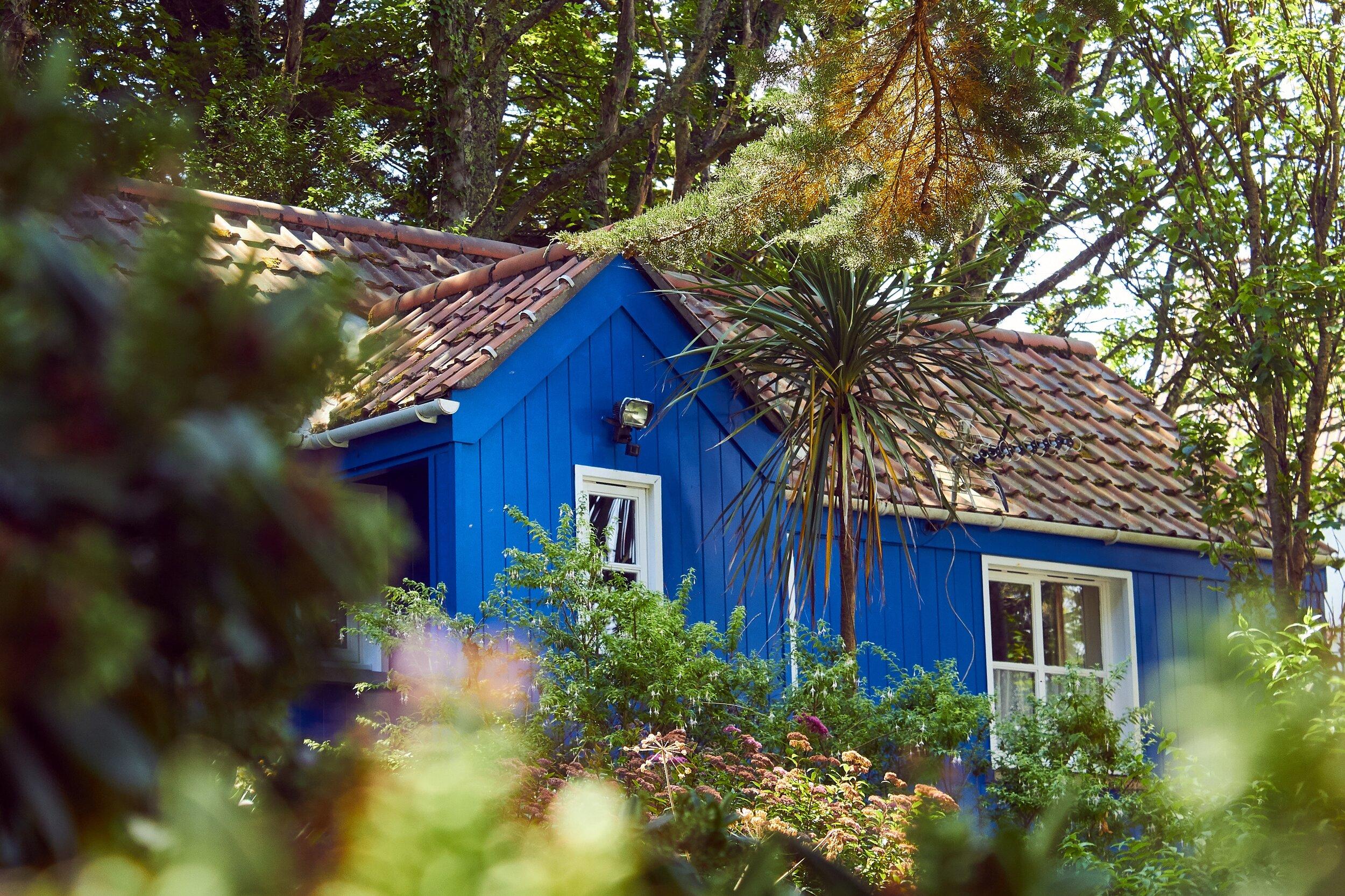 architecture-blur-bungalow-2825030.jpg
