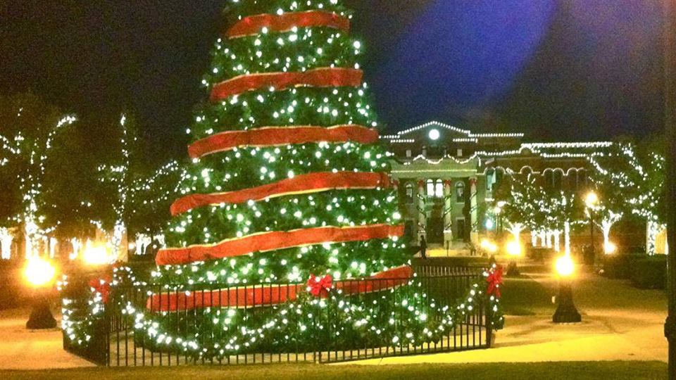 Hackley Park Christmas Tree