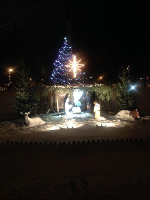 Hackley Park Christmas Star