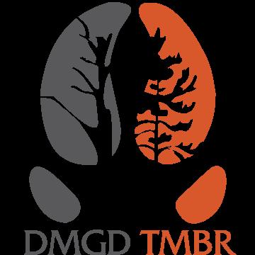 DMGD-TMBR-Logo-Grey-and-Orange.png