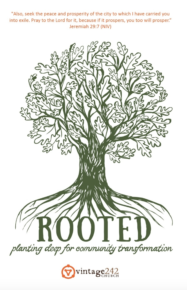 Rooted Initiative Summary Guide.jpg