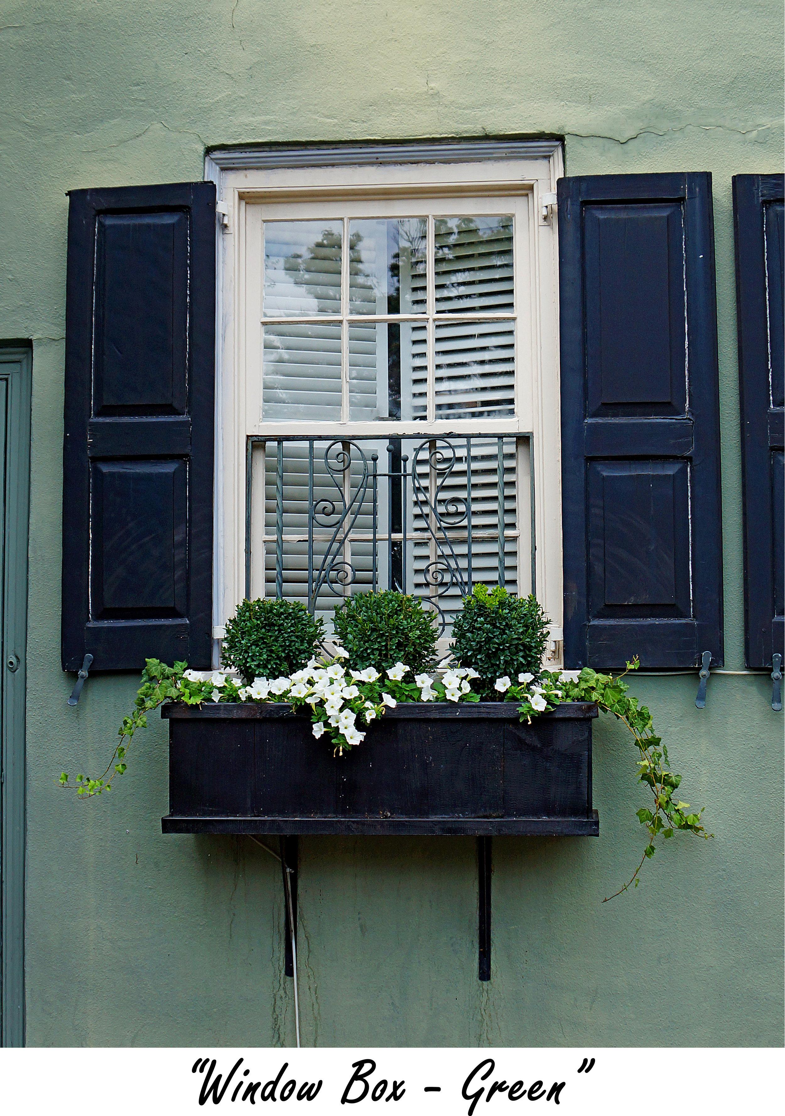 windowbox Green.jpg