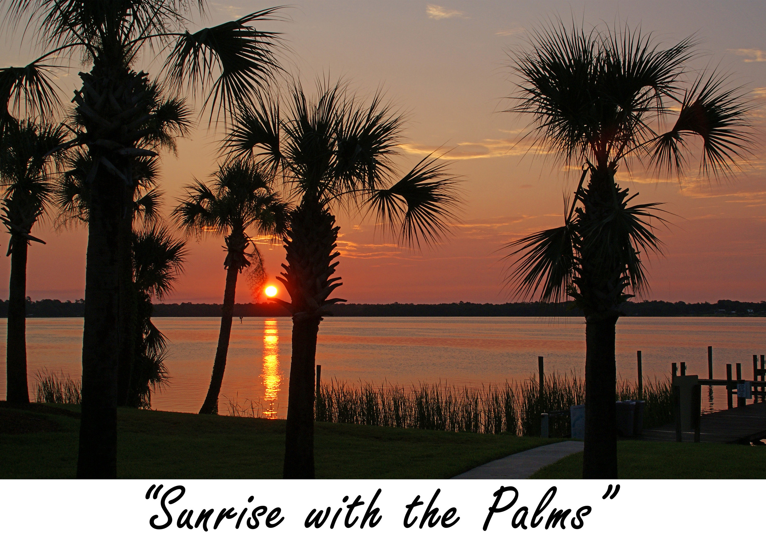 Sunrise with the Palms.jpg
