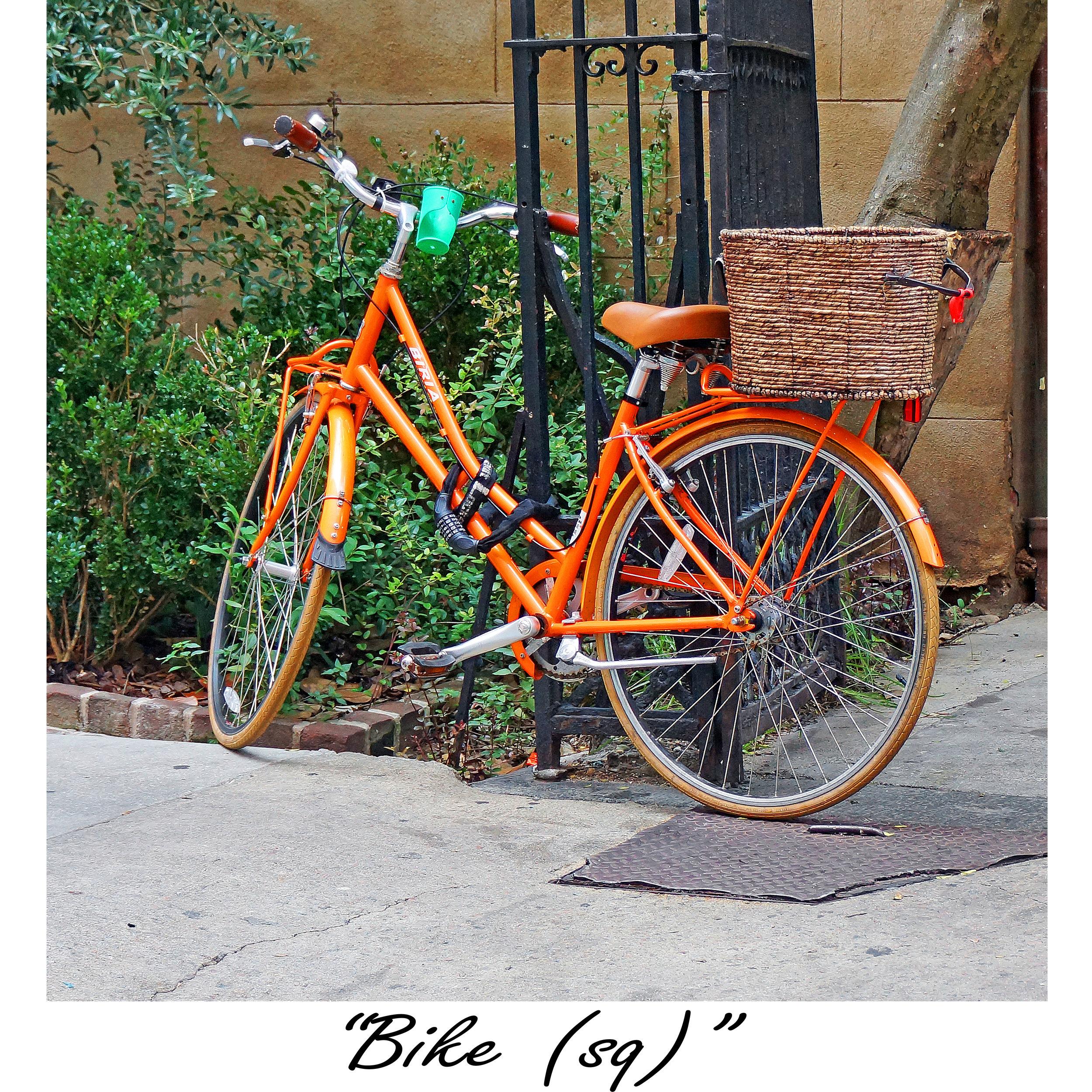 Bike (sq).jpg