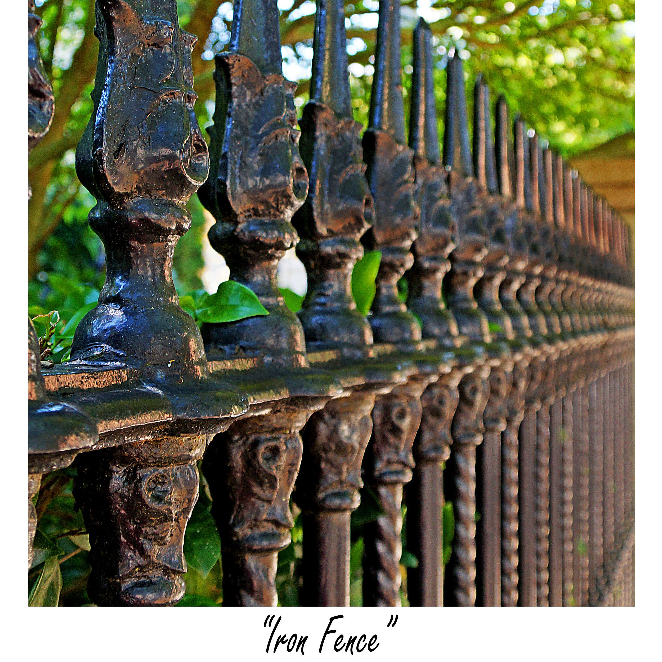 Iron Fence (sq).jpg