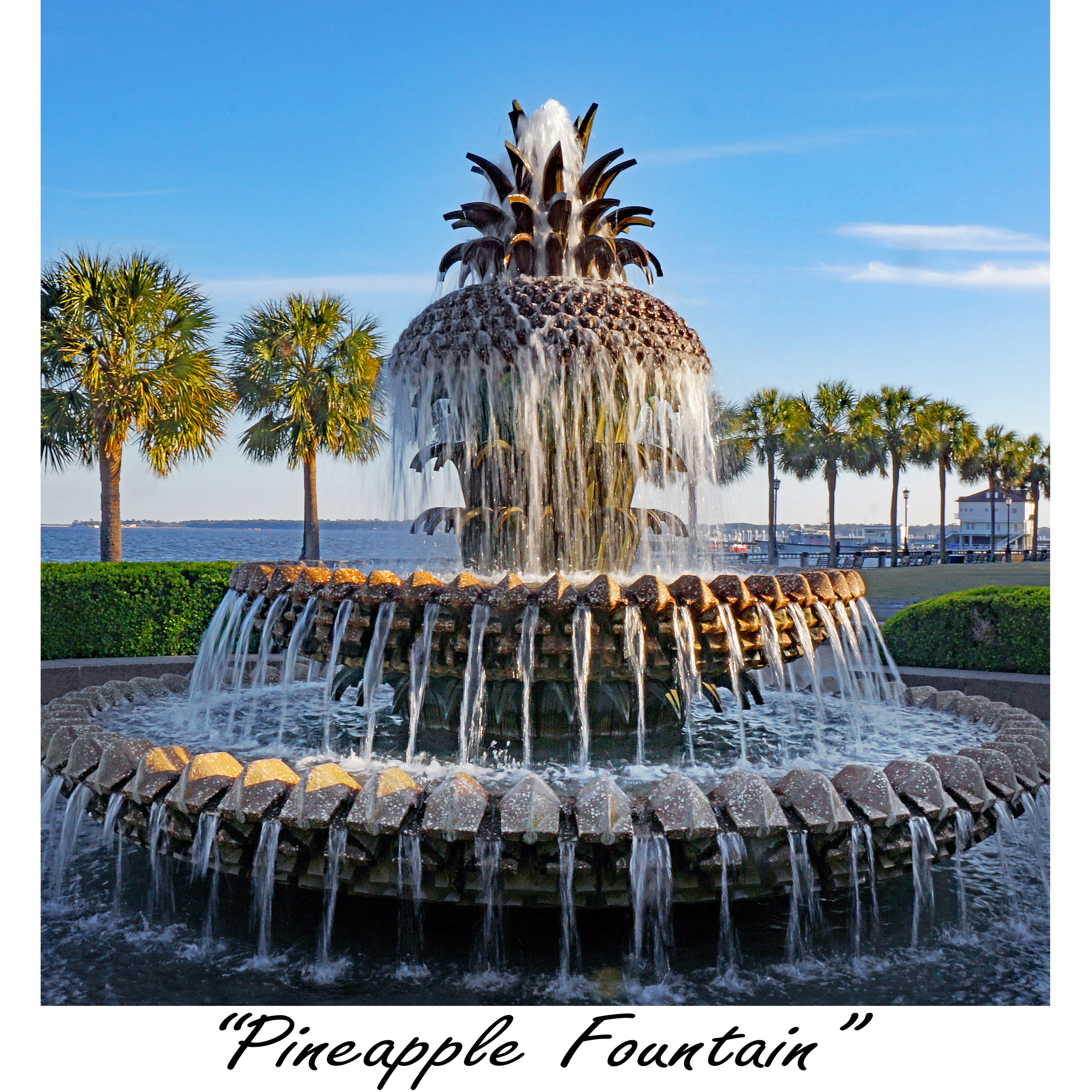 Pineapple Fountain.jpg