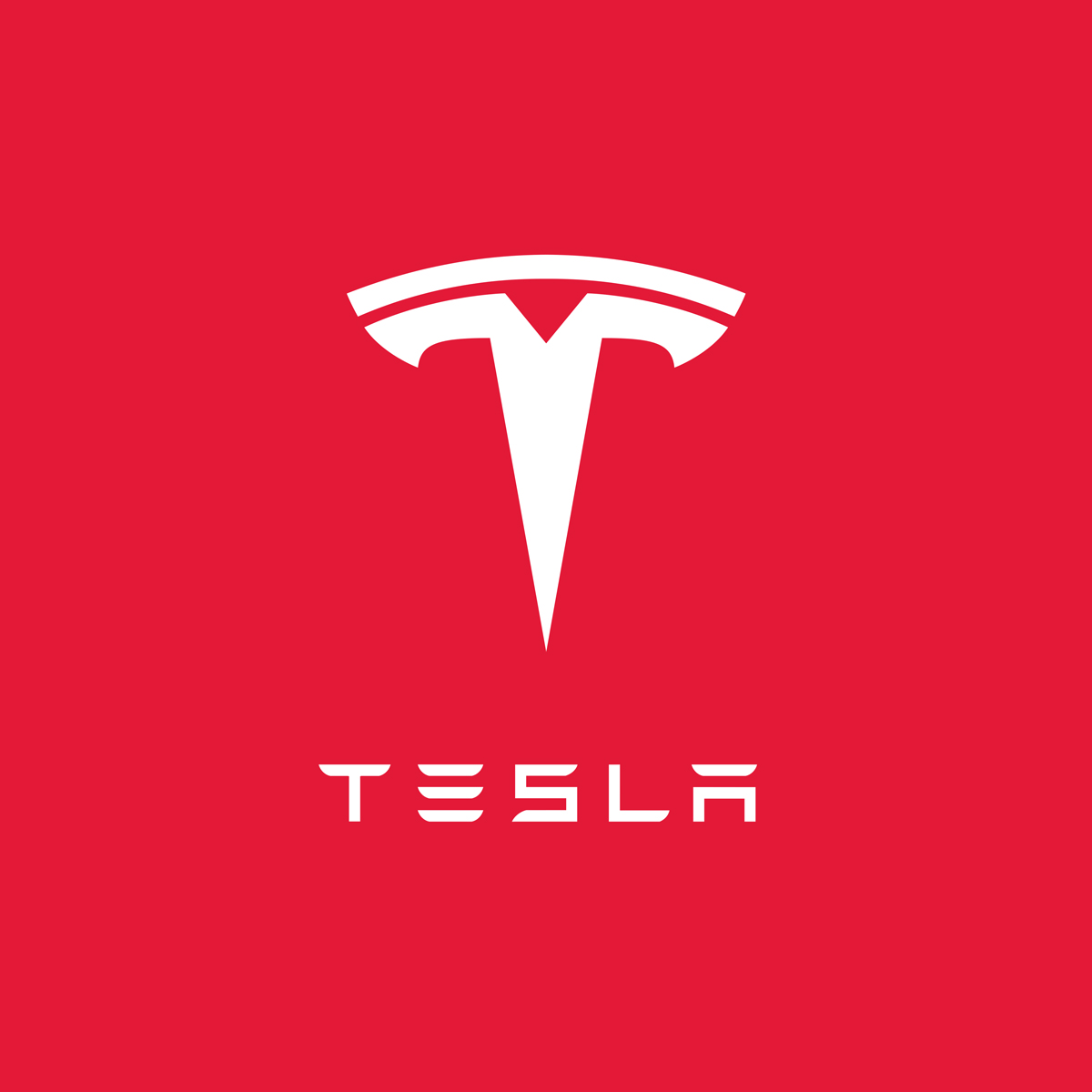 Case Study — Tesla (Coming Soon)