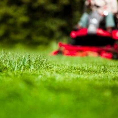 9dfb6152-5316-48ea-9036-cf911402cd69-Lawnmower.jpg