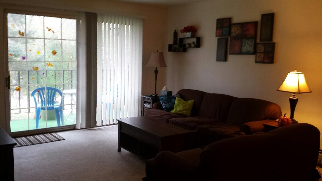 Willams Livingroom.jpg