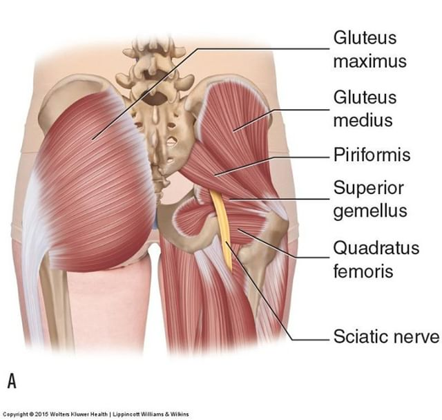 Piriformis syndrome is a condition in which the piriformis muscle, located in the buttock region, spasms and causes buttock pain. The piriformis muscle can also irritate the nearby sciatic nerve and cause pain, numbness and tingling along the back of the leg and into the foot (similar to sciatic pain). Physical therapy is the best form of treatment for this condition to not only help you relieve the pain, but to help resolve the underlying problems that created this condition.